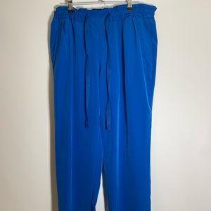 Zara pants sz M elastic waist band